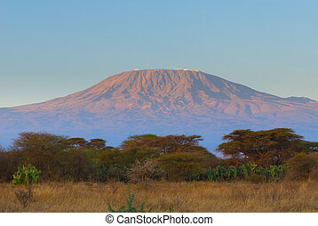 kilimanjaro mountain at the sunrise