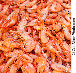 shrimps at fishmarket