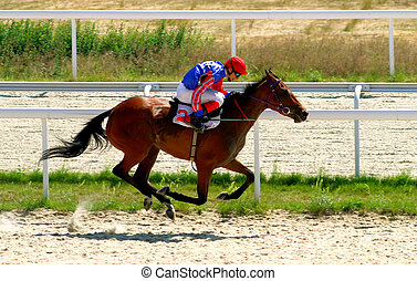 The Winner. - A racehorse and jockey cross the finish line...