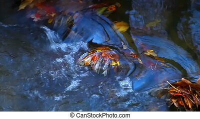 River small flowing water looping time laps