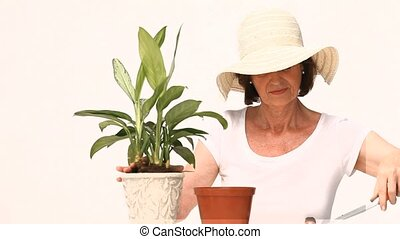 Retired woman doing some gardening isolated on a white...
