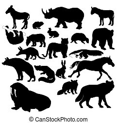 Wildlife - Illustration of wildlife animals