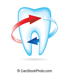 Tooth with arrows Vector illustration on white