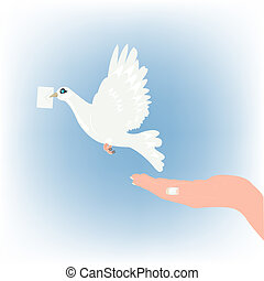 White dove carries letter in beak - Dove with letter and...