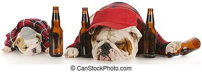 bêbado, cachorros