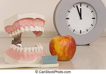 dentist - a teeth model at the dentist practice