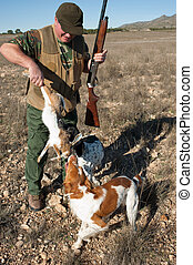 Retrieving - Pointer and brittany hunting dogs retrieving a...