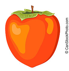 The persimmon. Isolated on white. Vector illustration.