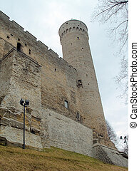 Medieval wall and tower long Herman of old Tallinn