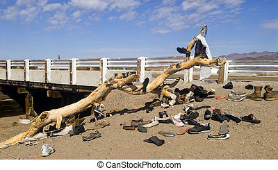 Famous Shoe Tree in Amboy, California