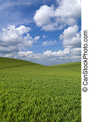 Rolling hill landscape - Beautiful rolling hill landscape...