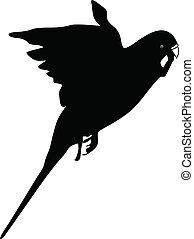 parrot flying silhouette vector illustration