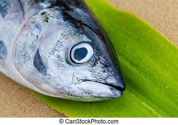 head of tuna fish at a fish market