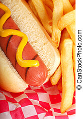 Hot dog with fries - Freshly grilled hot dog with mustard...