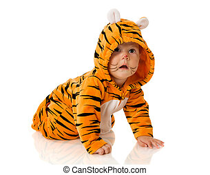 Tiger baby - Six month baby wearing tiger suit sitting...