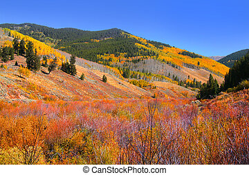 Scenic Rocky mountains - Bright colors of Autumn trees in...