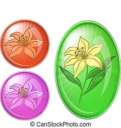 Flower lily, buttons set