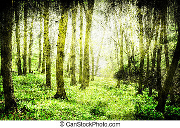 forest - grunge forest background with space for text or...