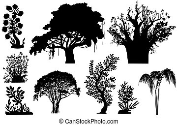 African trees - vector - various African trees and bushes -...