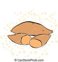 Sweet Potato - A sweet potato on a polka dot background....