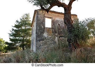 rural ruin