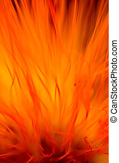 Flower flame abstract