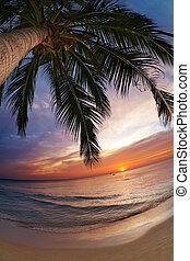 Tropical beach, Thailand - Tropical beach, Chang island,...
