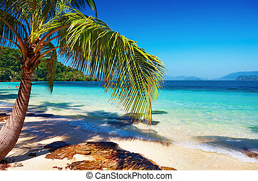 Tropical beach, Thailand - Tropical beach, Wai island,...