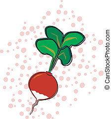 Radish - A radish on a polka dot background. Background is...