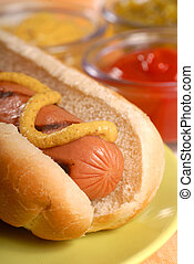 Hot dog with condiments