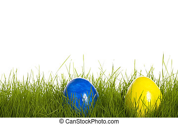 blue and yellow easter egg in grass with white background