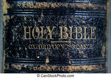Very Holy Bible - Side panel of very old bible