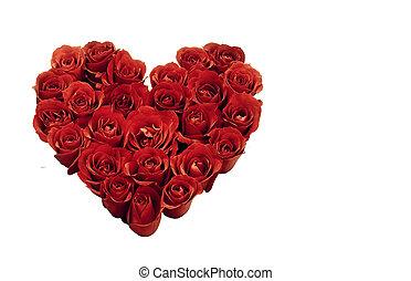 vermelho, rosas, Coração