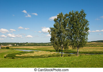 rural landscape with two trees