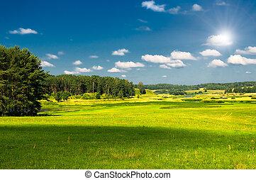 田園, 風景