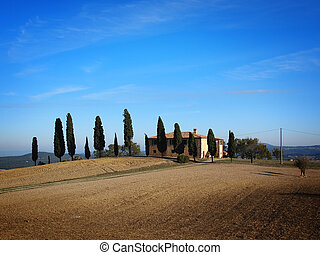 Tuscan house - Typical farmhouse with cypress trees near...