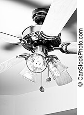 Ceiling Fan attached to the roof of a room