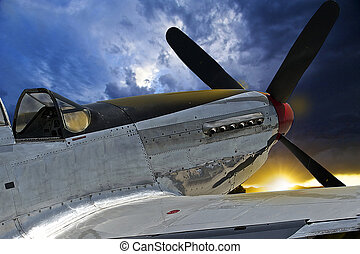 Mustang War Bird - World War II Fighter Plane
