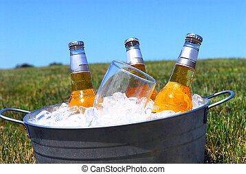 balde, cervejas, gelo, piquenique, armando