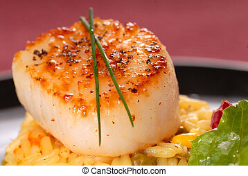 Seared scallop on a bed of saffron rice - Freshly seared...