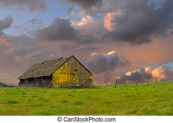 Old weathered abandoned barn in a field - Weathered old...
