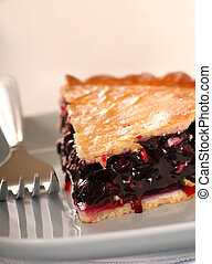 Fresh blueberry pie on a blue plate with a fork - Freshly...