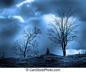 trees silhouettes in the moon light