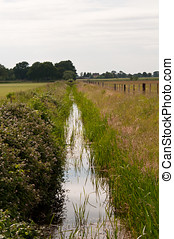 Dyke - Photo of a field drainage dyke in summer