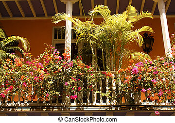 Typical colonial style balcony with plants. Cartagena, Colombia