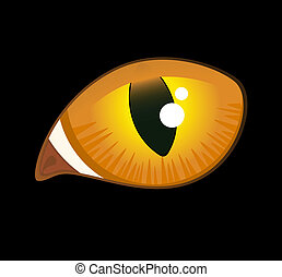 image of cat eyes