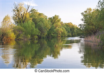 channel in the Danube Delta - a small channel in the Danube...