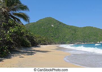 nudista, praia, Tayrona, nacional, parque, Colômbia