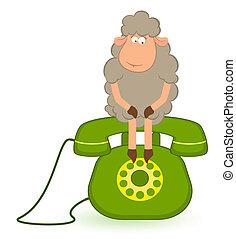 sheep sits on a telephone, waits a
