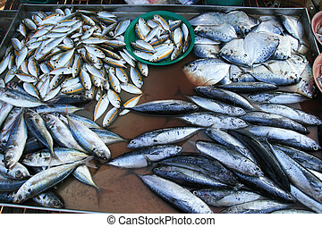 fish at market in Thailand - wild caught fresh fish at a...